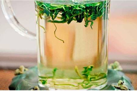 蒲公英茶可以天天喝吗?蒲公英茶润喉清凉功效明显
