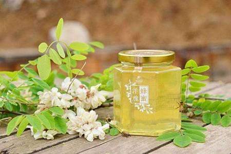 洋槐蜂蜜的功效 女人喝洋槐蜂蜜的六大好处