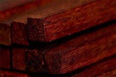 最常见的观赏和装饰用硬木有哪些