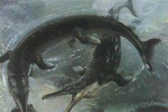 古蜥鲸vs龙王鲸恨杀古蜥鲸和龙王鲸