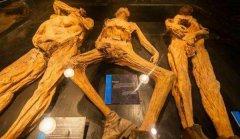 在地球上发现巨型人骨是否证明历史上有巨人