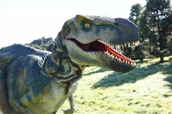 新西兰活捉了一只恐龙是真的吗?很可能是炒作(玩具恐龙)