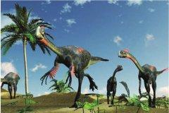 阿拉善龙:阿拉善地区所发现的恐龙(双足食草恐龙)