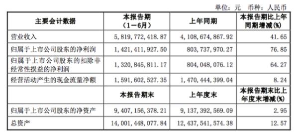 数码配件业务收入降10%至1.74 亿元