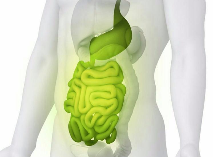 7日清肠瘦身法食谱怎么安排 只需要7天让你华丽变身