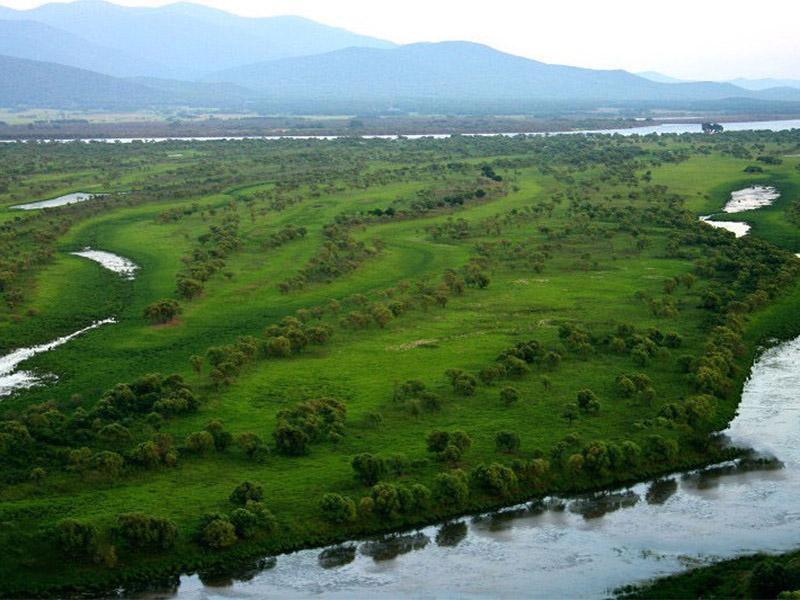 中央生态环保督察披露地方存在保护区监管不严问题