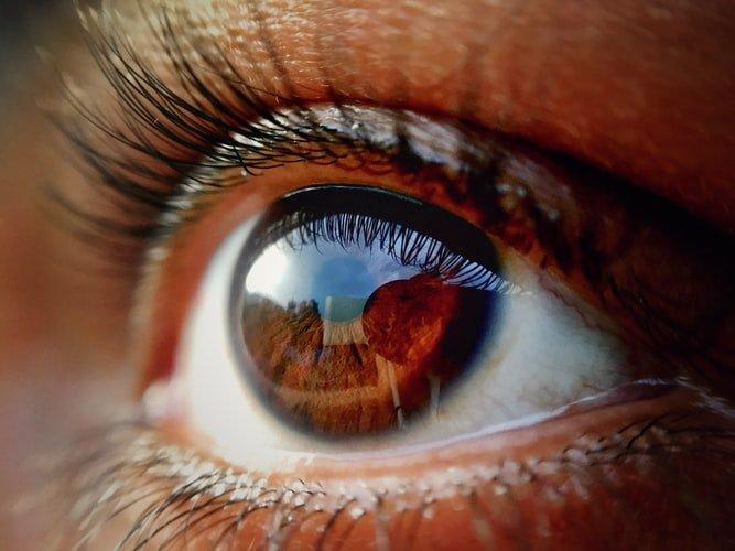 德国23岁学生能根据命令缩小和放大他的瞳孔